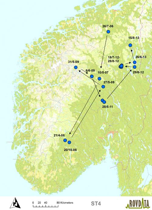 rennebu kart Hannbjørn tilbake i Trøndelag etter sju år