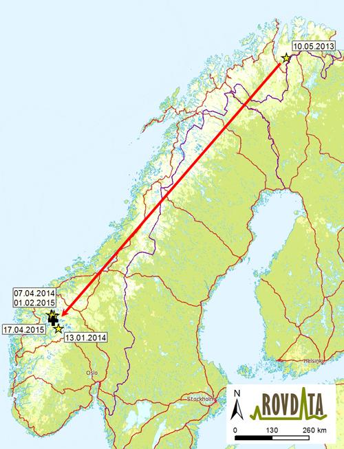 jostedalsbreen kart Tanajerven endte sine dager i Luster jostedalsbreen kart