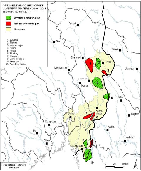 ulvesonen kart Ny grenseflokk påvist ulvesonen kart
