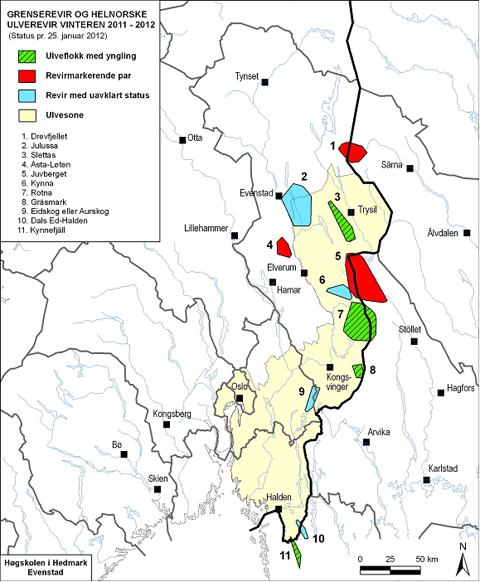 ulvesonen kart Har bekreftet ett helnorsk ulvekull ulvesonen kart