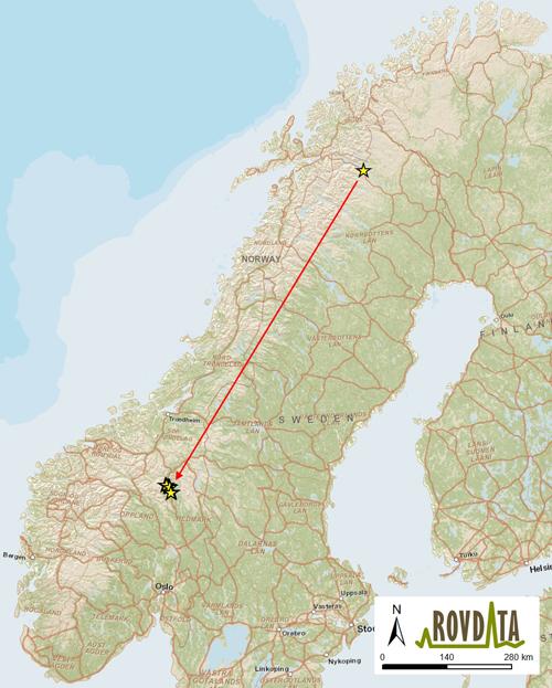 østerdalen kart Kirunajerven» slo seg ned i Alvdal østerdalen kart