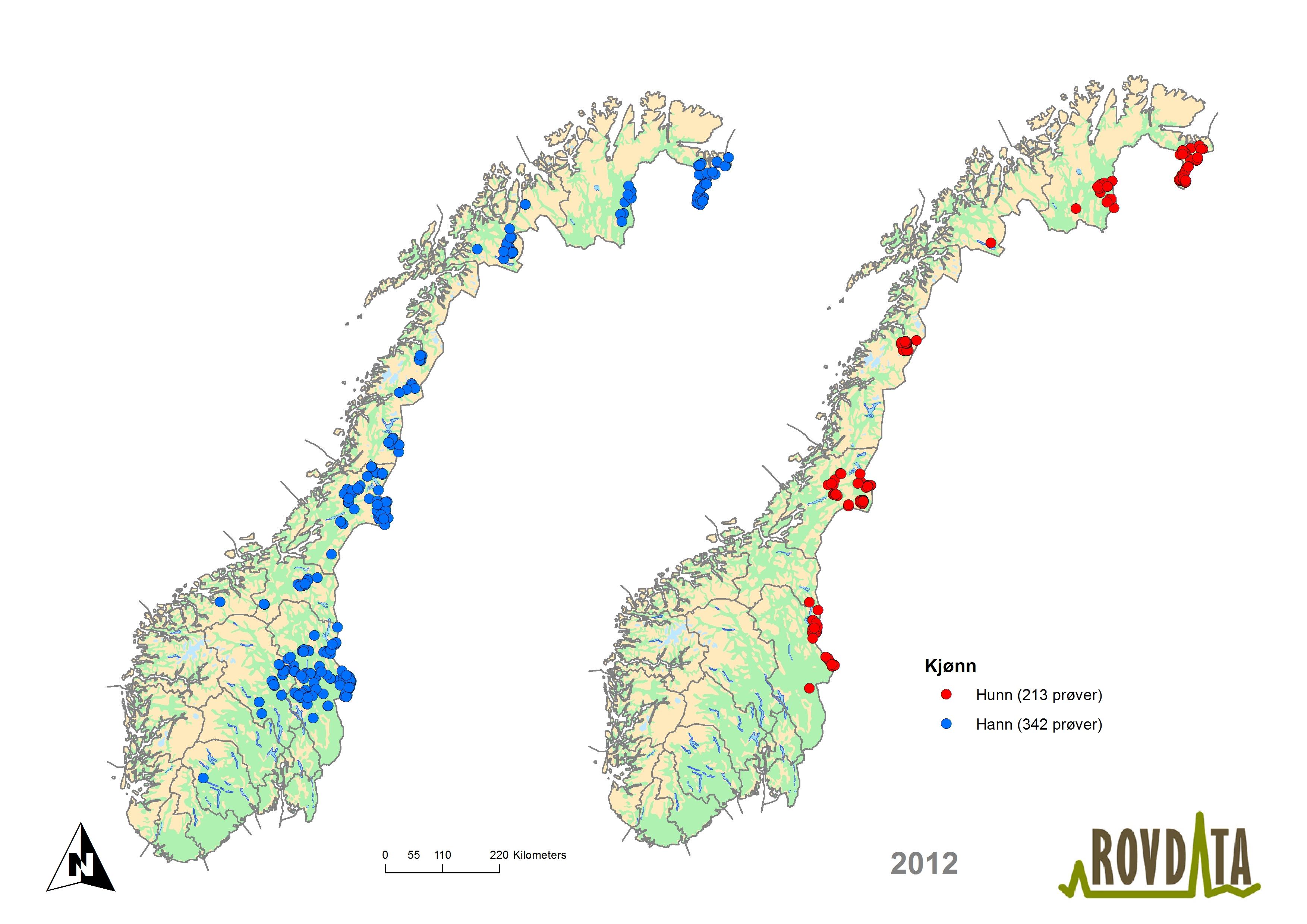 norges geografiske midtpunkt kart Rovdata   Last ned kart og figurer, brunbjørn