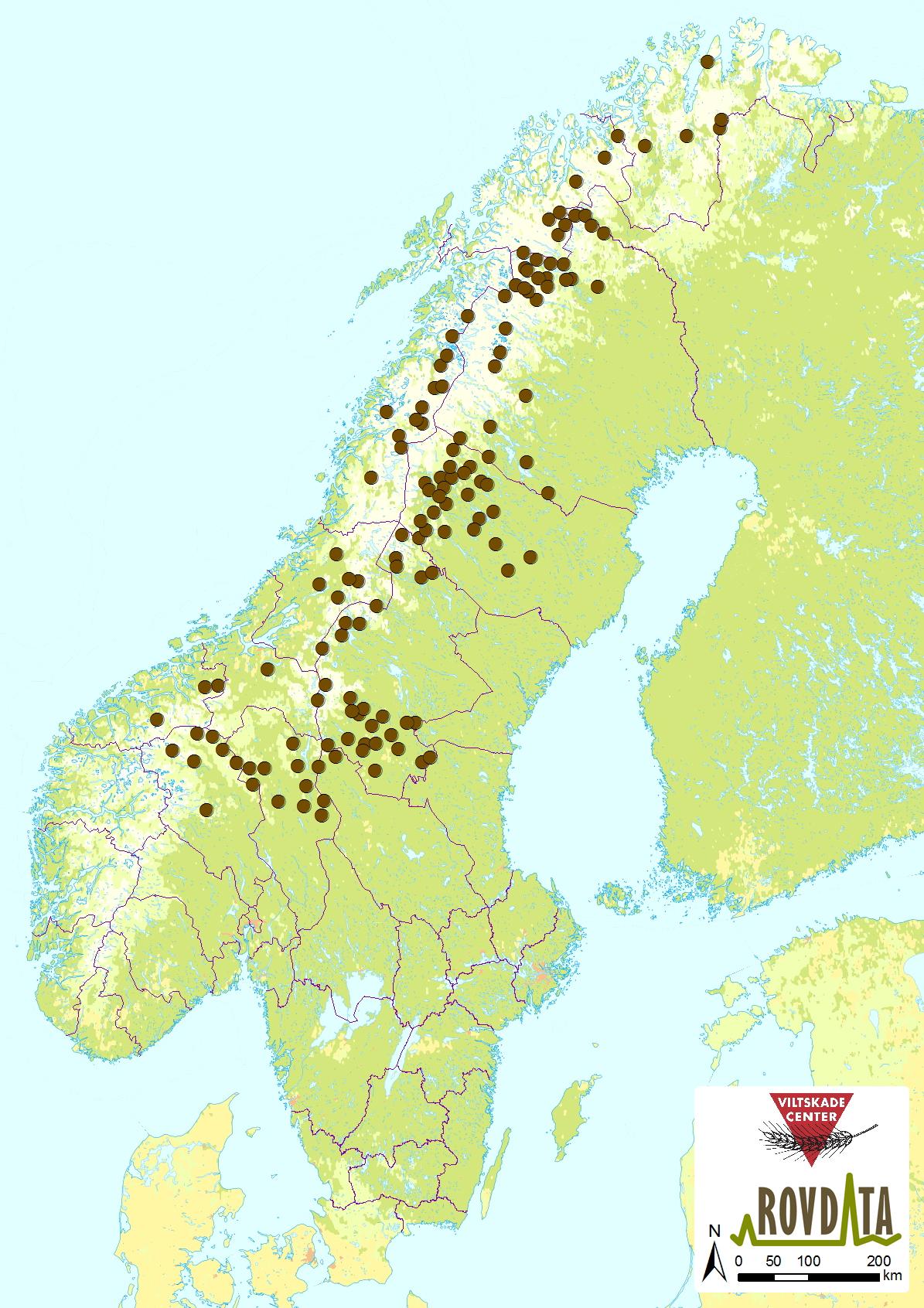 skandinavia kart Rovdata   Last ned kart og figurer, jerv skandinavia kart